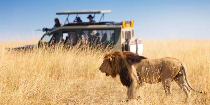 7 Days epic adventure package