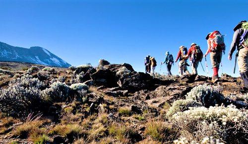 Lemosho Route, Kilimanjaro