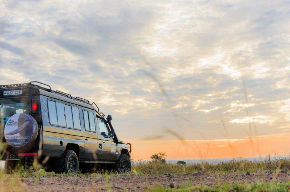 4 Good reasons to choose a private safari