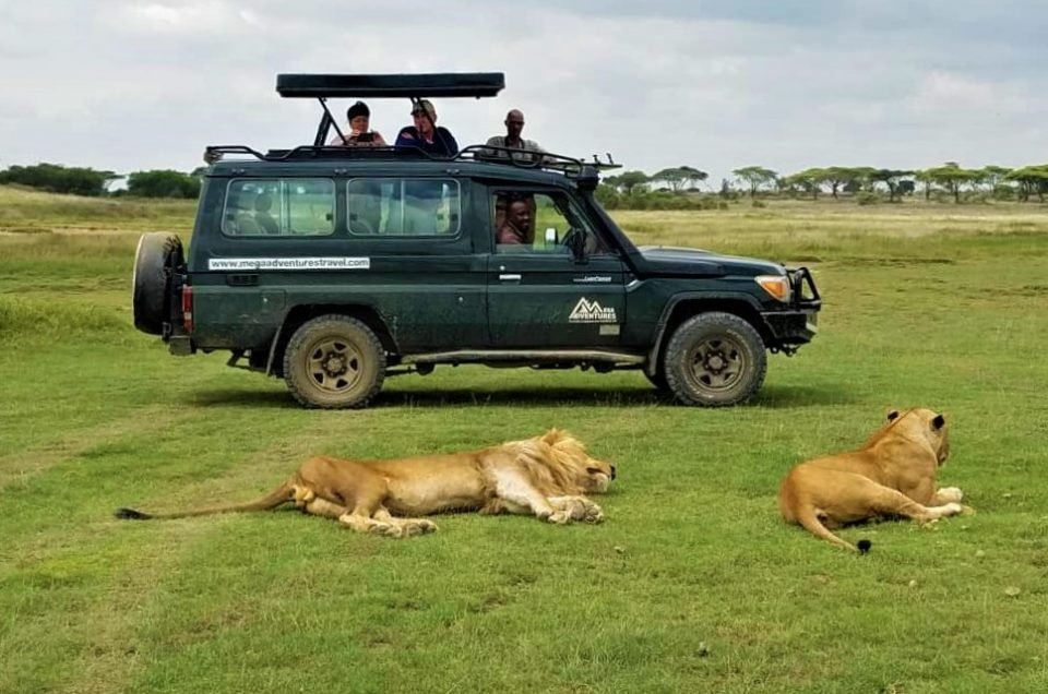 5 reasons to choose the wet season for your tanzanian safari
