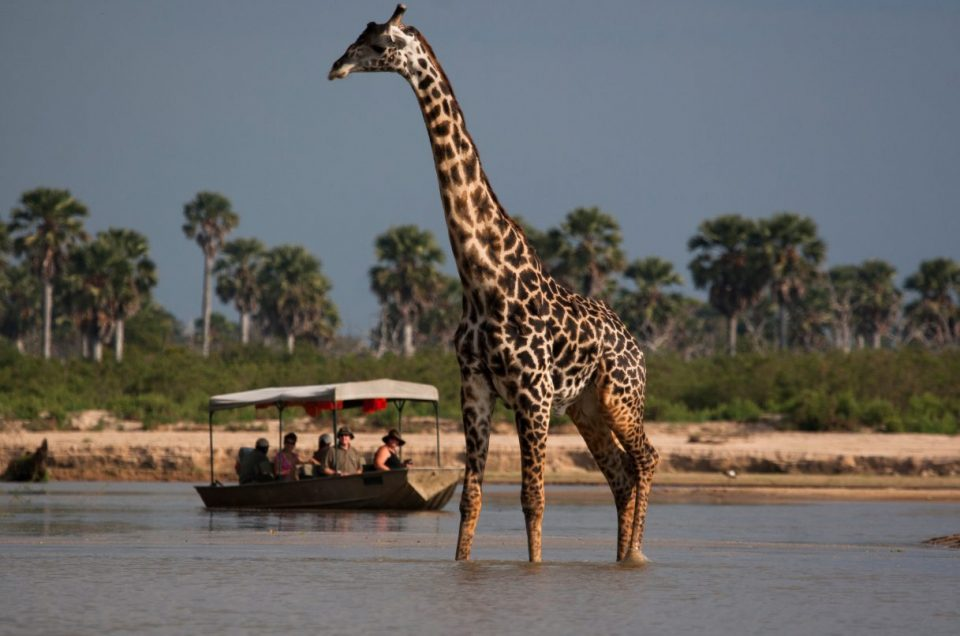 Tanzanias southern circuit? Umm yes!
